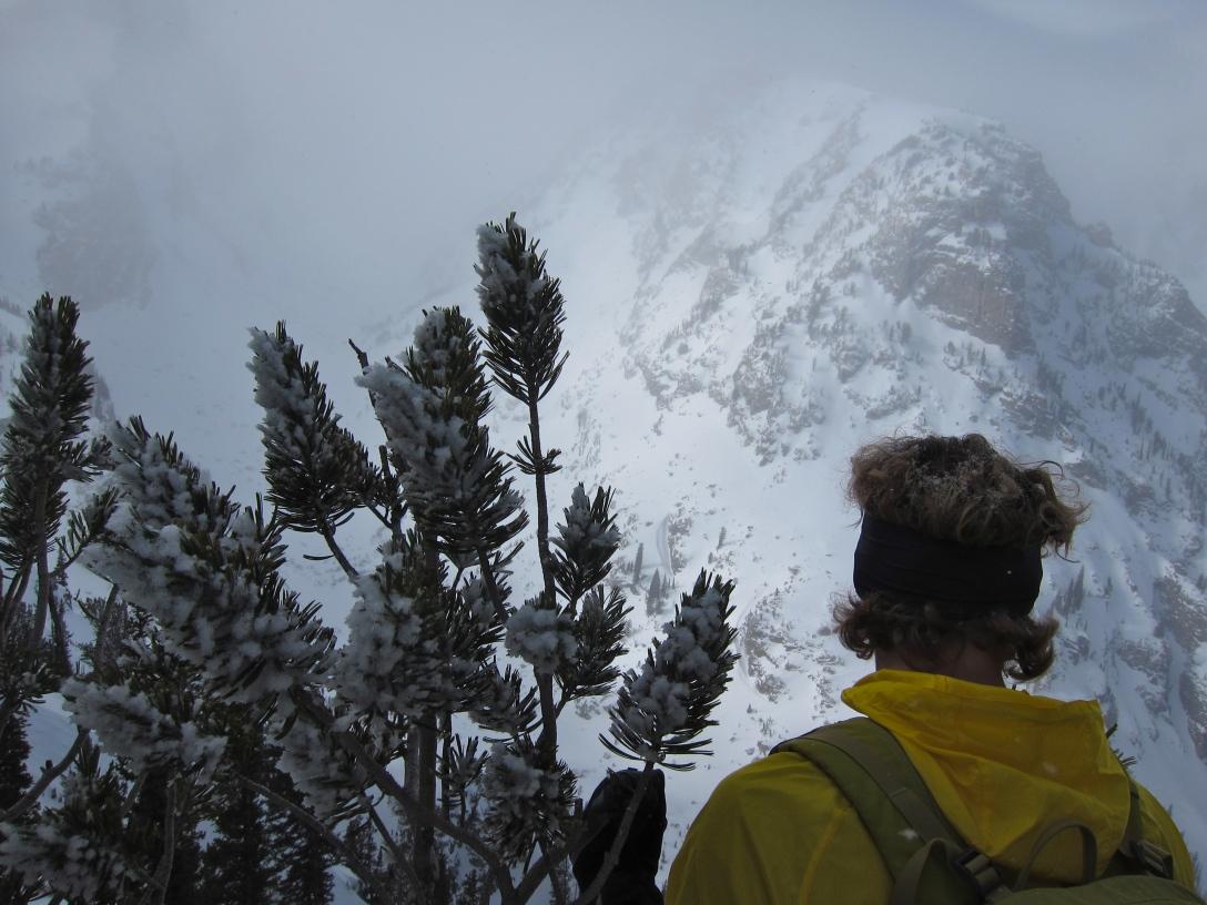 Teton National Park: Proper mountains