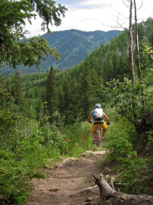 Tall Pine trail, Glennwood Springs