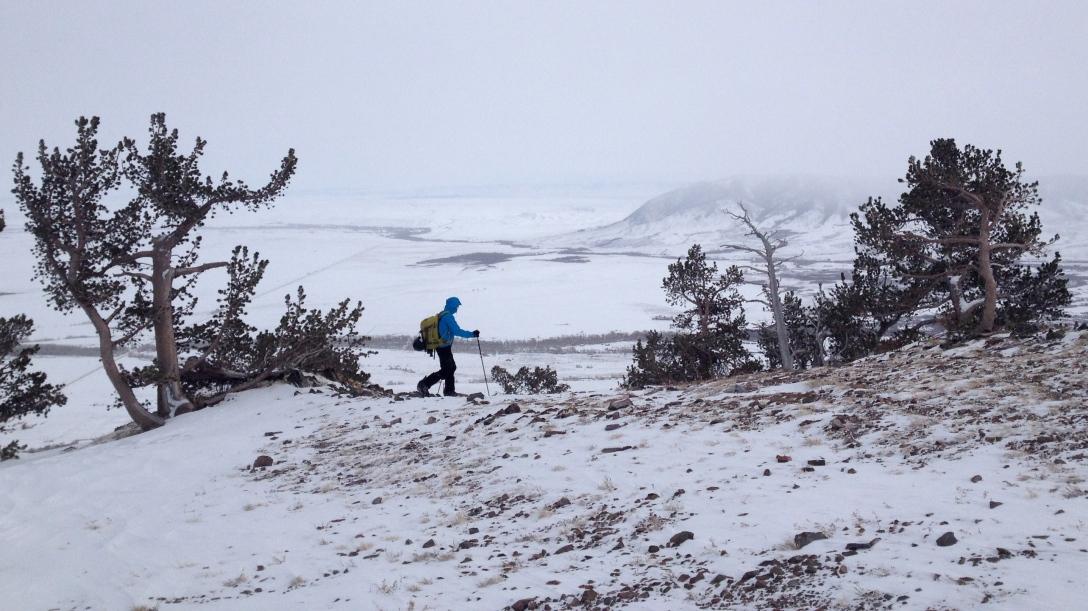At the top of Centennial Ridge
