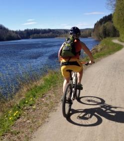 The Umeå river
