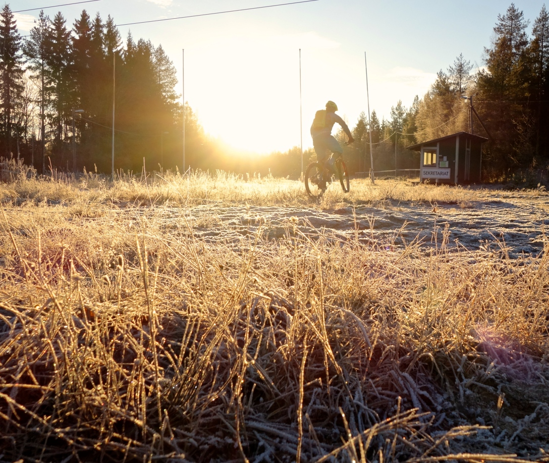 November sun and frost
