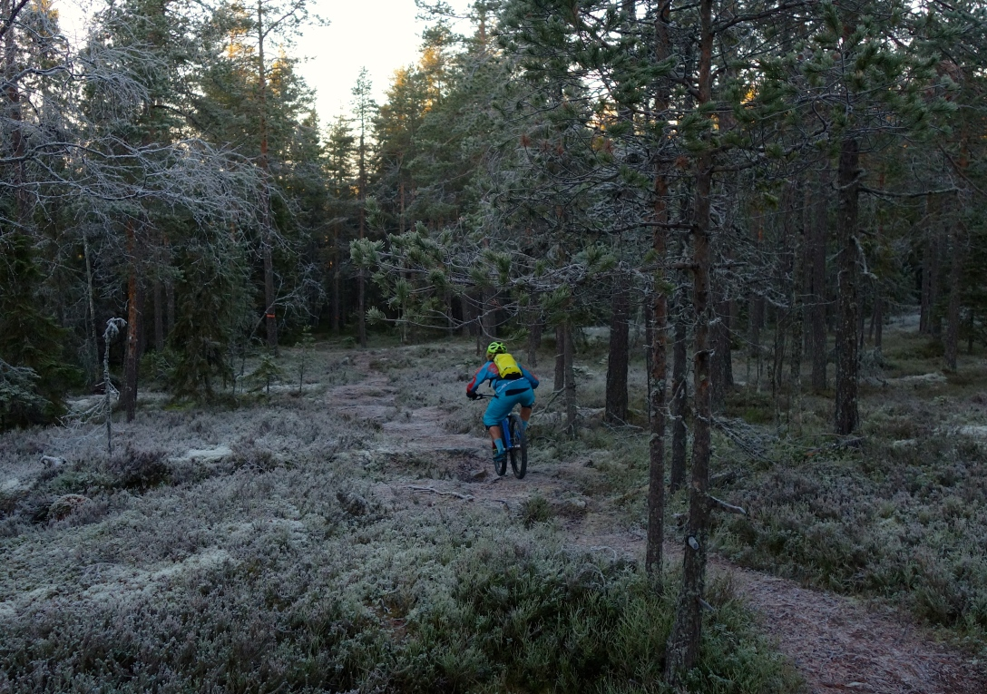 A ski guide once told be that I should be easy on the snow. In Umeå, you need to be real easy on the ice at the  moment.