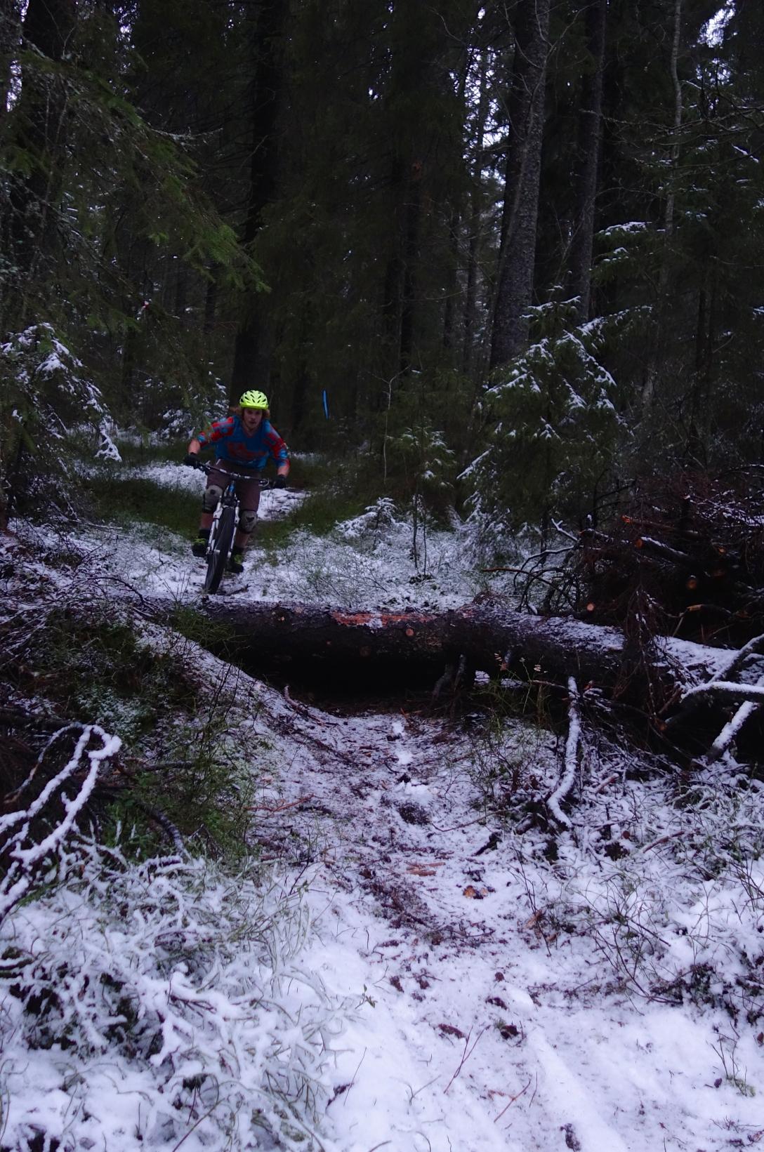 Jumping logs in Gamlia