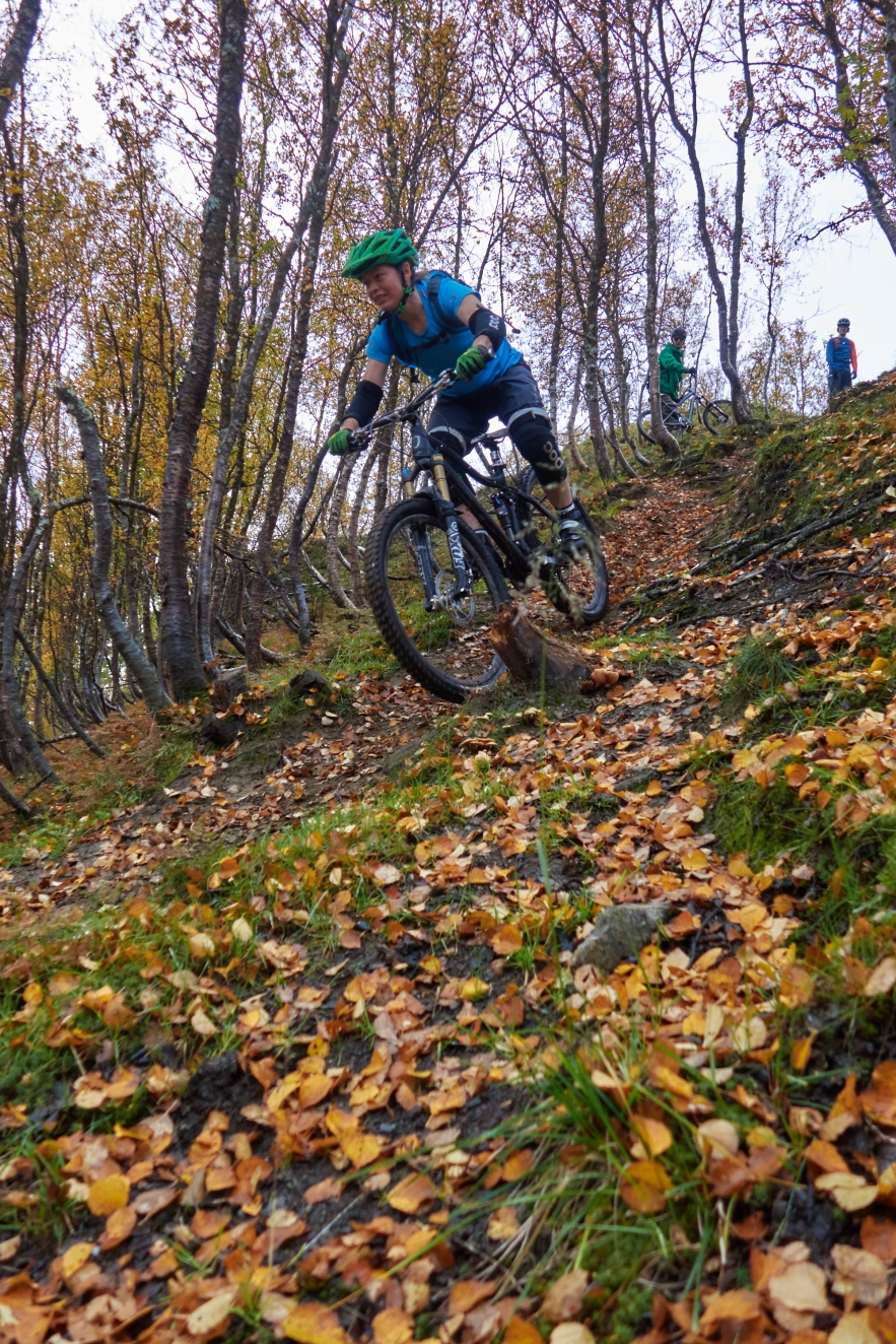 Lisa Chapuis shredding some autumn leaves in the Lyngen alps.