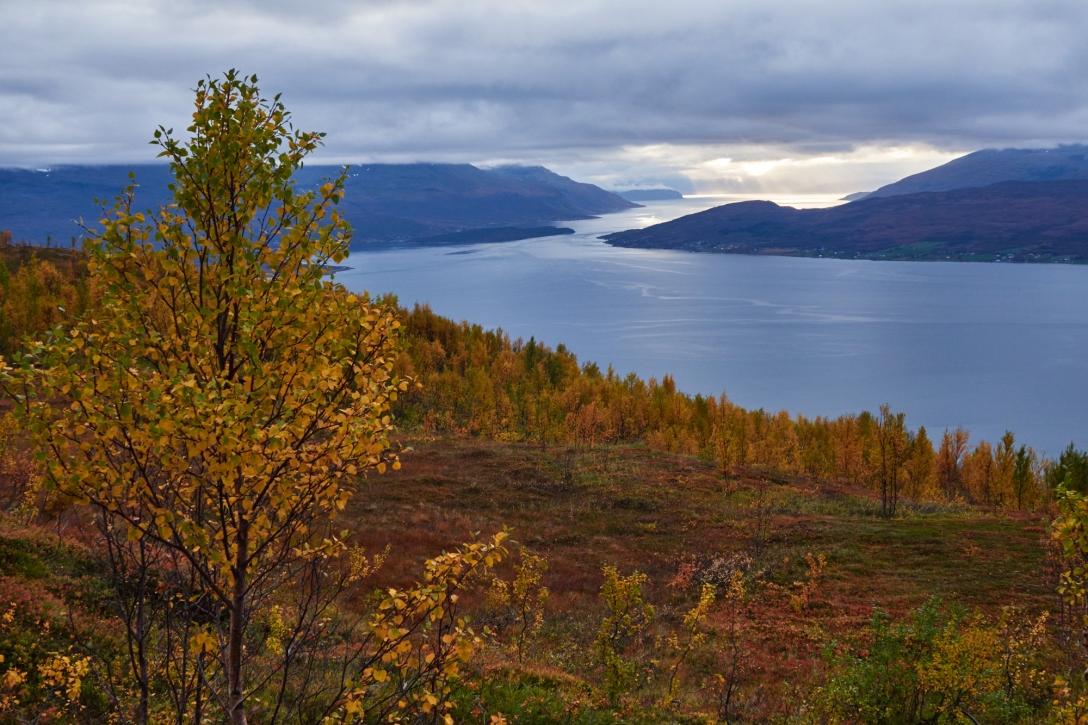 Sollisdalen