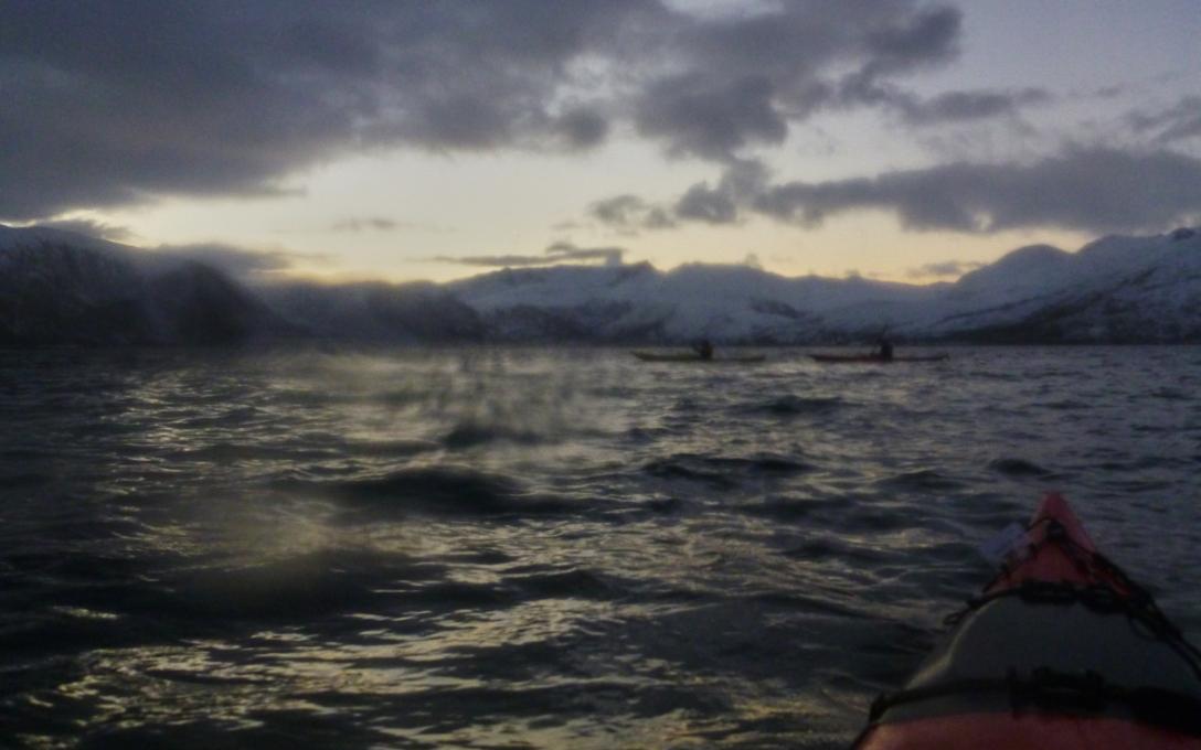 Kaldfjord in a wet blur.