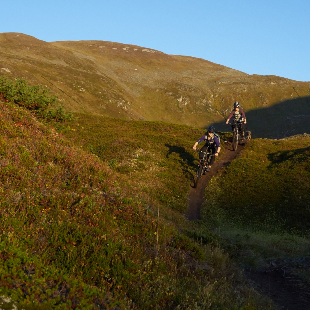 Taking a refill in Sollidalen, Sept 22nd. Riders: Rita Brekken, Sofia Ahlbäck and Theo the dog..