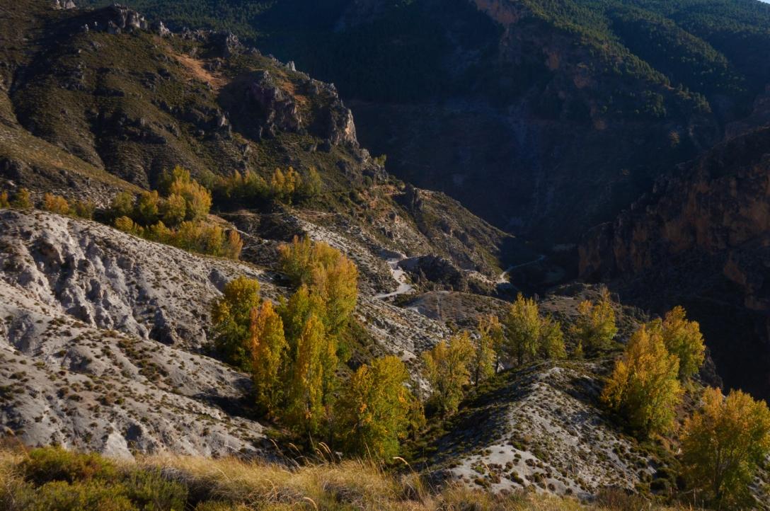 The gorge above Monachil.